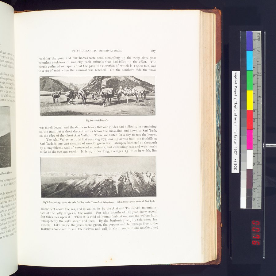 Explorations in Turkestan 1903 : vol.1 / Page 151 (Color Image)