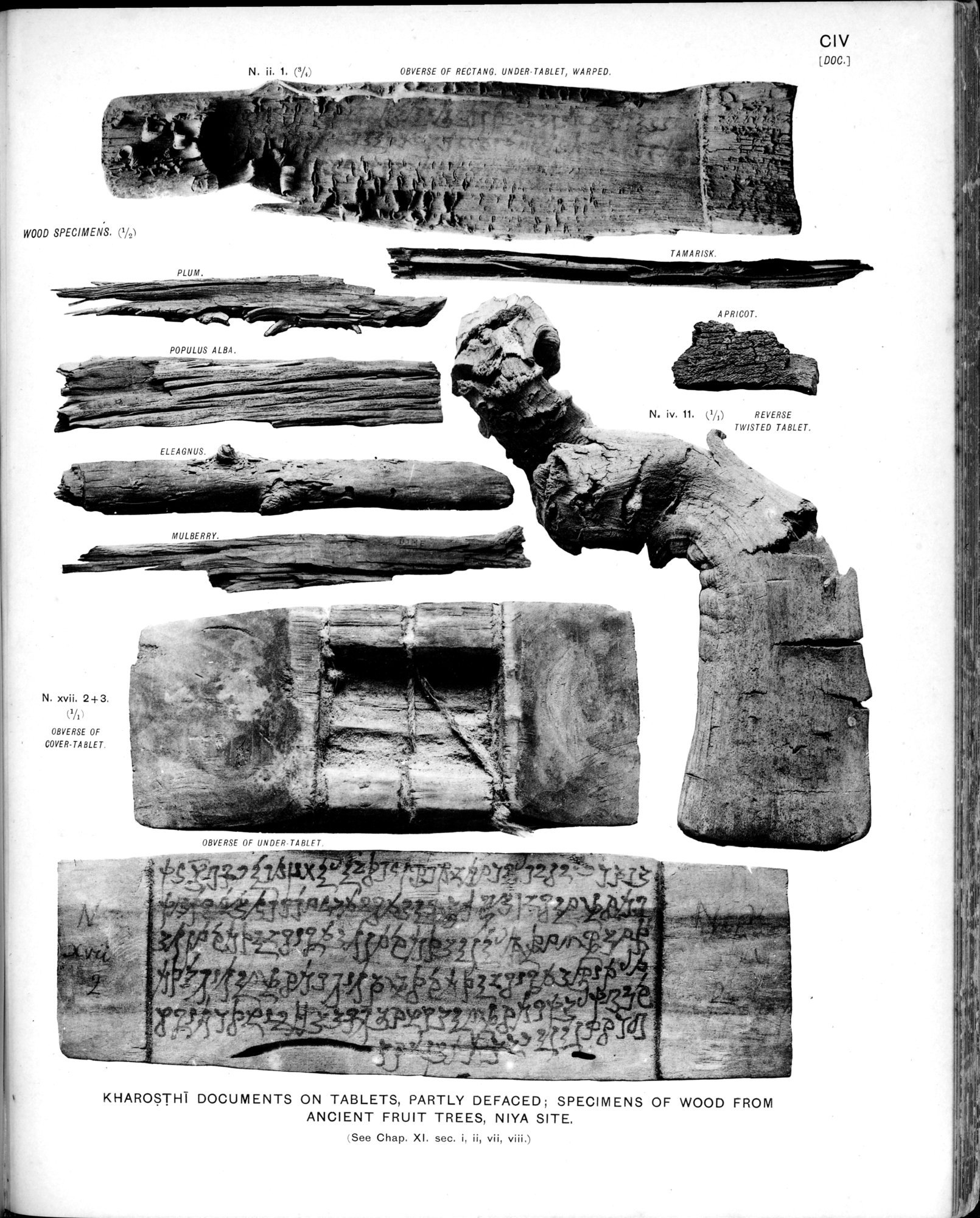 Ancient Khotan : vol.2 / Page 219 (Grayscale High Resolution Image)